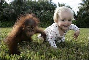 дети и животные-картинки о друзьях