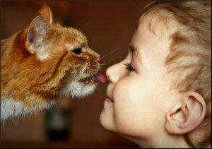 дети и животные-картинки с друзьями