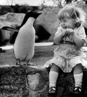 Дружба - это чудо: дети и животные
