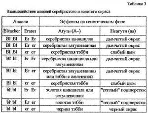 Составление и чтение генетических формул окраса